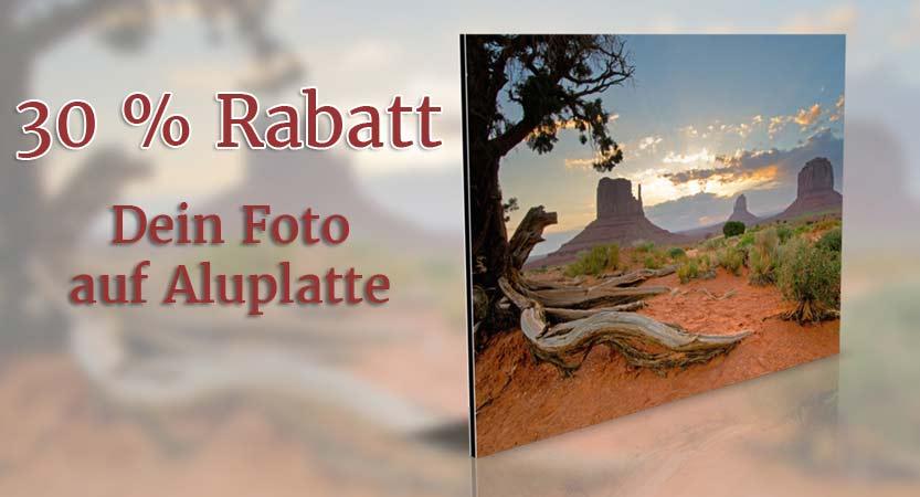 Foto auf Aluplatte kaschiert Rabatt