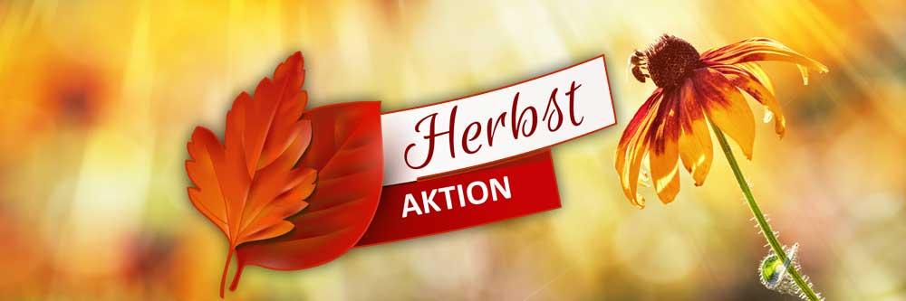 Herbst_PIXOprint