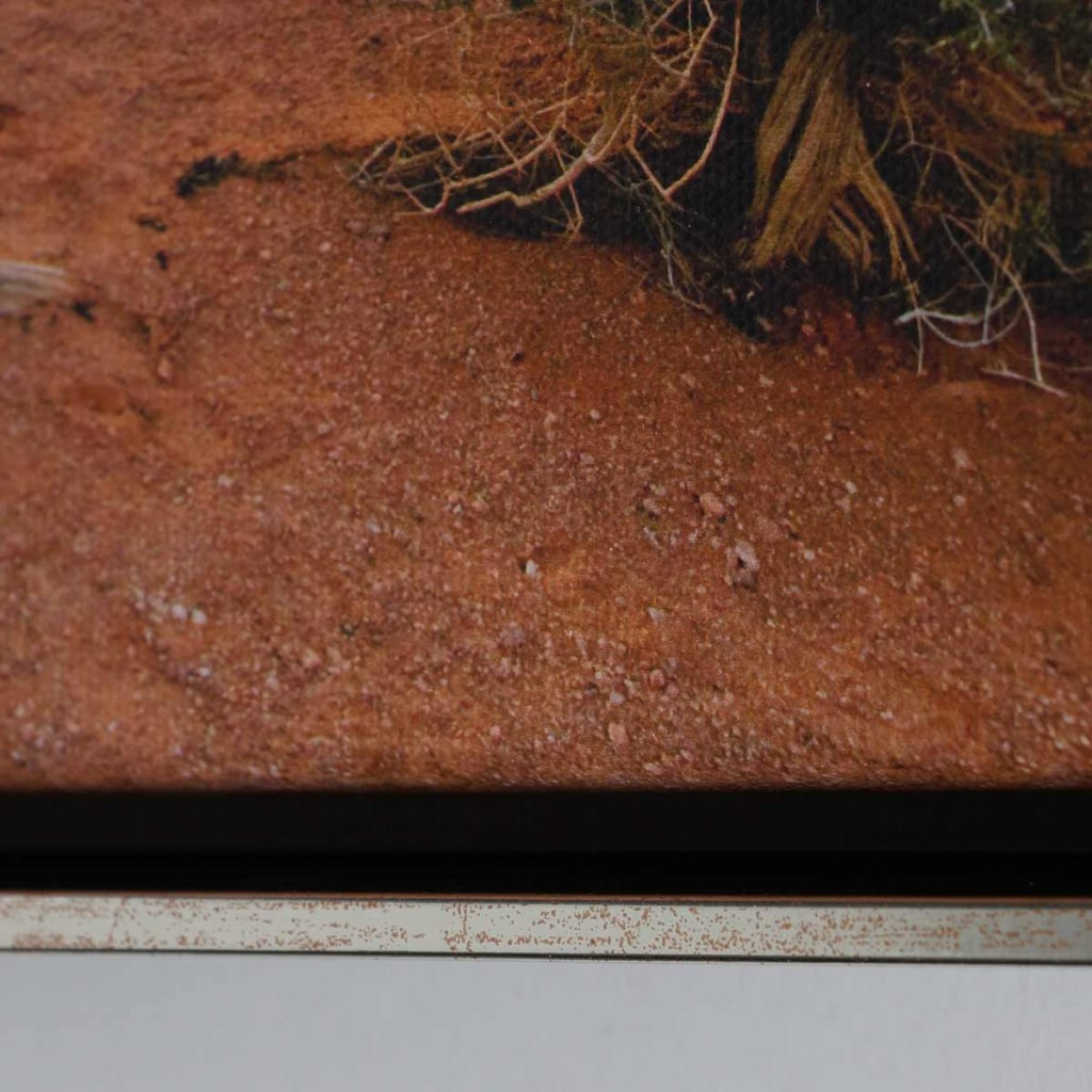 Silberner Schattenfugenrahmen mit Leinwandfoto