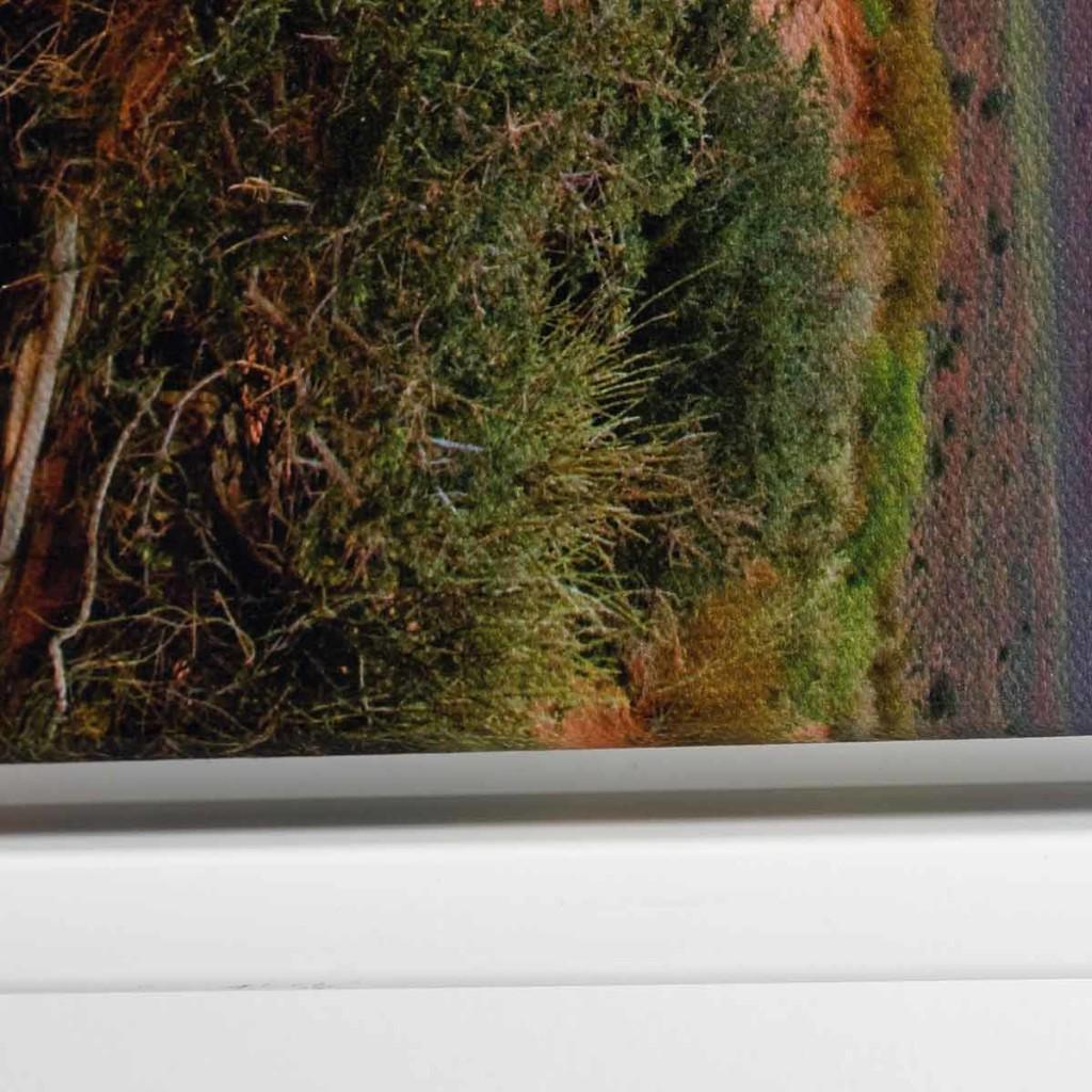 Weisser Schattenfugenrahmen mit eingelegtem Leinwandfoto